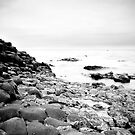 The Giants Causeway B&W by Nicole Orlowski