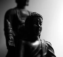still, buddha. melbourne by tim buckley | bodhiimages