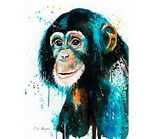 Chimpanzee 2 Photographic Print