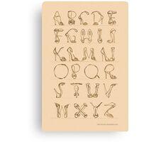 Shoes alphabet! Canvas Print