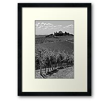 Tuscan Vineyards Framed Print