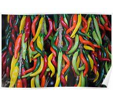 plastic chillies Poster