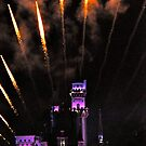 Fireworks over Disneyland Castle by Karina  Cooper