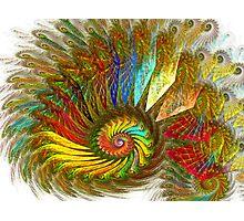 PONG Spiral Photographic Print