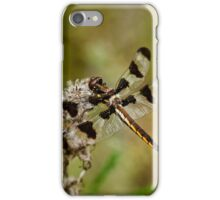 Twelve Spotted Skimmer Dragonfly iPhone Case/Skin
