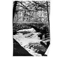 Gleason Falls Poster