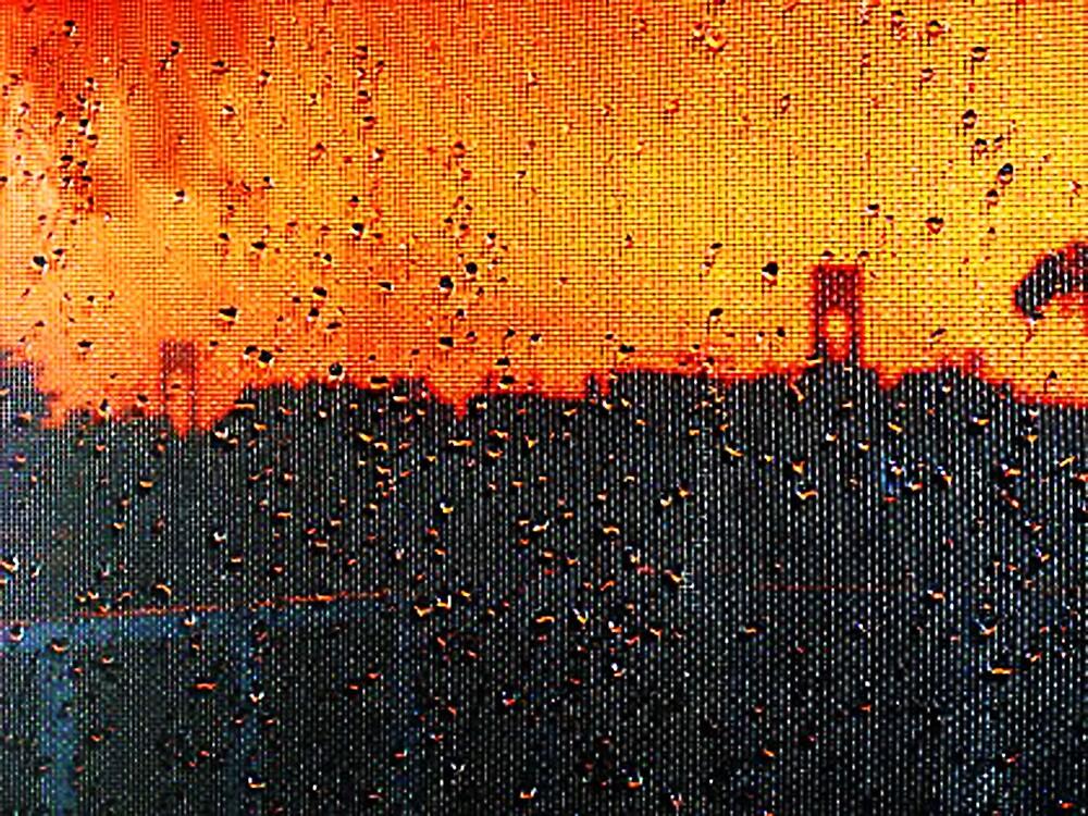 Verrazano Raindrops by Mistyarts