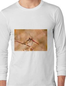 White Faced Meadowhawk Dragonfly T-Shirt