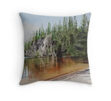 Sox Lake Throw Pillow
