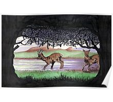 Out of the Forest II `Roe Deer in Morayshire Poster