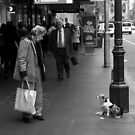Old Woman and Dogs by Andrew  Makowiecki