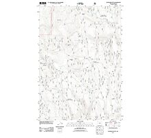 USGS Topo Map Oregon Telephone Butte 20110713 TM Photographic Print