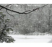 Snow Falling Photographic Print