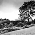 Clifton Suspension Bridge, Bristol, UK by MWhitham
