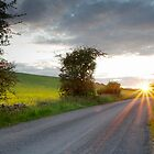 Sunset, Field Asserts, Oxfordshire, UK by RodneyCleasby
