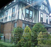 Elmwood street mini tudor mansion! by catnip addict manor