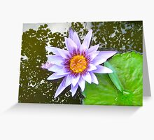 Waterlily 2011 v.1 Greeting Card