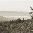 Great Smoky Mountains by Jeff Ore
