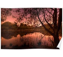 Martin's Pond by twilight Poster