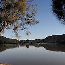 Towards the MacDonald - Hawkesbury River NSW by Bev Woodman