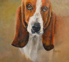 Sweet Flower,Bassett Hound by jimmie