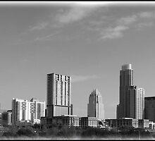 Austin by Diane McDonald