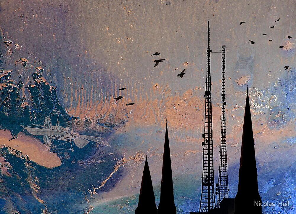 Theory of Flight - Swifts by Nicolas  Hall