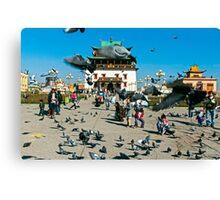 Pigeons. Gandan Monastery, Ulaanbataar, Mongolia. Canvas Print