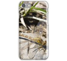 Dragonfly on rock iPhone Case/Skin