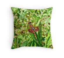Calico Pennant Dragonfly - Celithemis elisa Throw Pillow