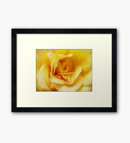 Yellow Madame Framed Print