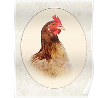 Little Red Hen Poster