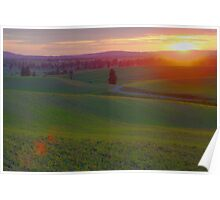 Flared Sunset Poster