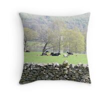Lazing in the Sun Throw Pillow