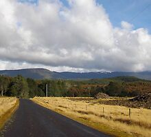 Tasmanian country road to Loongana by gaylene