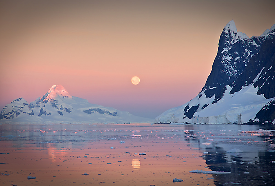 Moonrise in the Lemaire Channel, Antarctic by Neville Jones