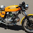 Ducati 750 Sport by resin8n