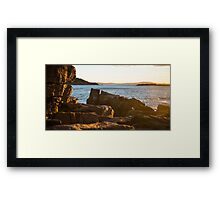 Sunrise Seagull – Acadia National Park, Maine Framed Print