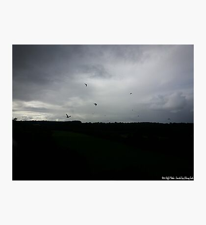 Irish Countryside Photo dc Photographic Print
