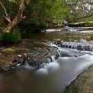 Upstream by John Morton
