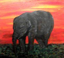Baby Elephant by Tricia Winwood