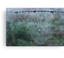 Dew on Spiders Web - Echuca Canvas Print