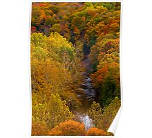 """Tinker's Creek and Autumn Foliage""  Poster"