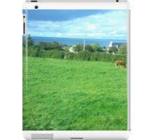 Irish Countryside Photo aglg iPad Case/Skin