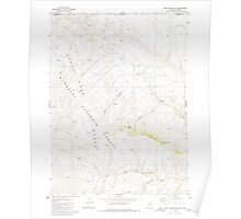 USGS Topo Map Nevada Odell Mountain 319693 1980 24000 Poster