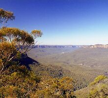 Blue Mountains, Australia by Alberto  DeJesus