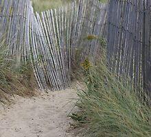 Beach Fence by Bixie