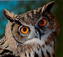 Eagler Owl. 10 x 14 Painted in Gouache on board by Robbiegraham