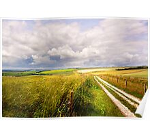 A Summers Day On The South Downs Poster