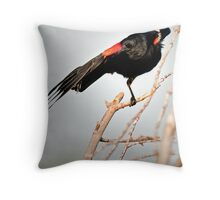 Everybody Was Kung Fu Fighting! Throw Pillow